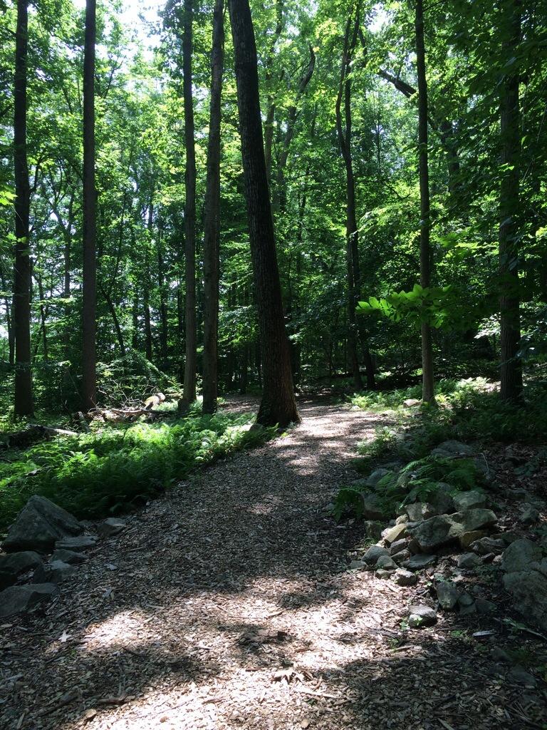 Hike & run