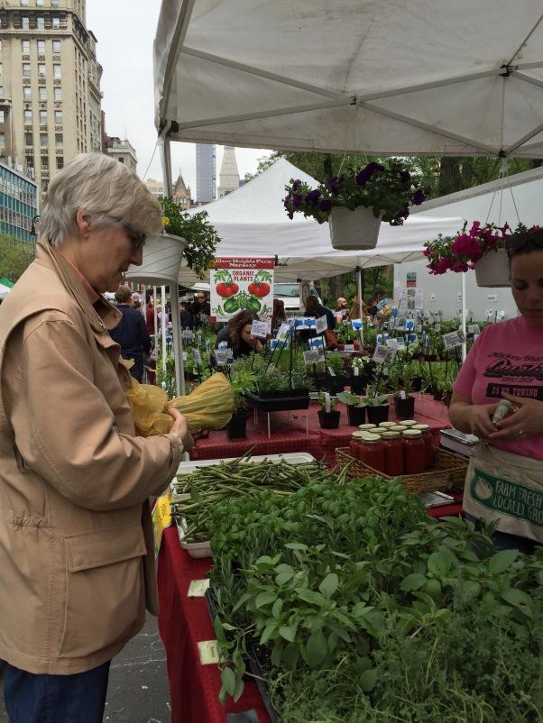 union square green market