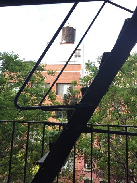 NYC fire escape herb garden